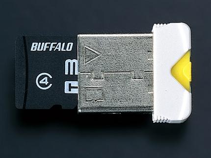 buffalo_rmum.jpg